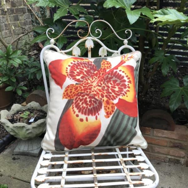 Mexican Iris botanical garden cushion